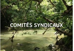 Logo Comité Syndical