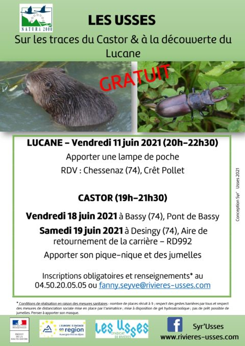 Affiche-Syr'Usses-Lucane-Castor_page-0001